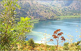 Lake Kournas: Southern Spring